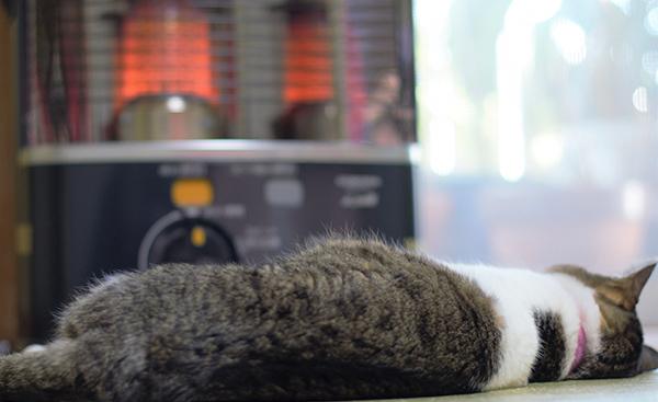 来るべき冬に備えてもう一度冬の節電方法をチェック