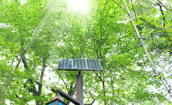 値上げを続ける再生可能エネルギー発電促進賦課金